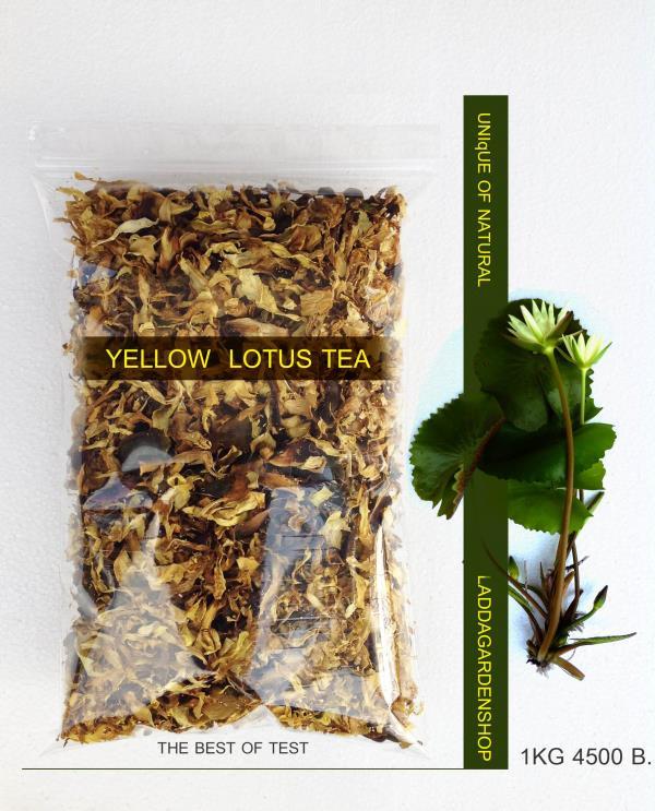 ชาบัวสีเหลือง yellow lotus tea