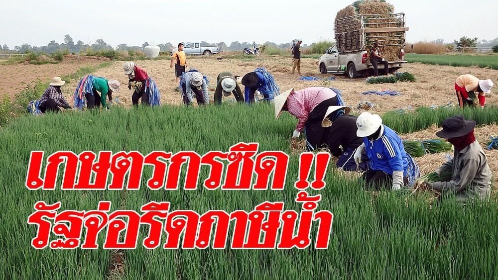 เกษตรกรตายแน่ รัฐจ่อรีดภาษีน้ำ ภาคเกษตรเก็บไม่เกิน 50 สตางค์ต่อลบ.ม. คาดเดือนหน้าเริ่มบังคับใช้